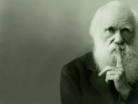 Girard 202 Darwin