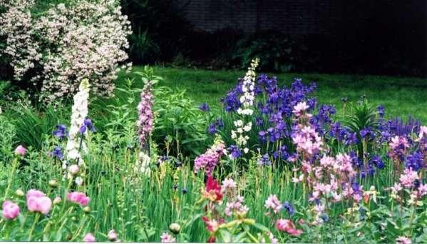 an-english-garden