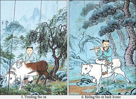 Ox-herding 3