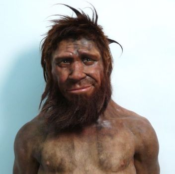 Evola 10 Ueber Neanderthalensis