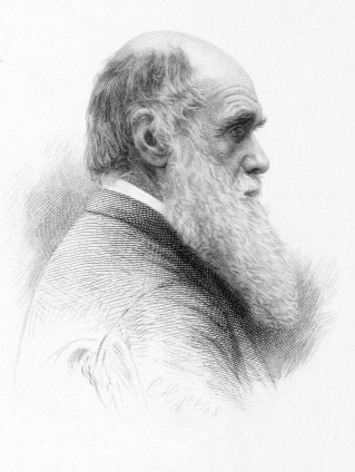Girard 07 Darwin