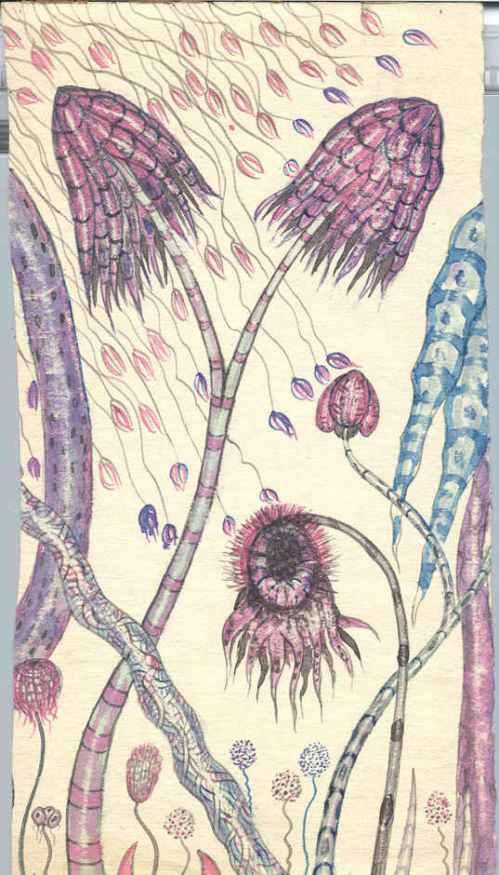 CAS 06 Plants