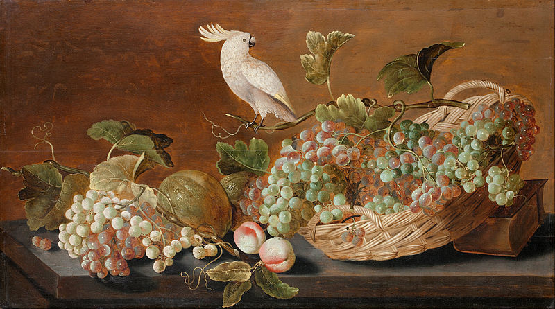 Bird 03 Koets, Roelof (1592 - 1654) - Still Life with Parrot (1640)