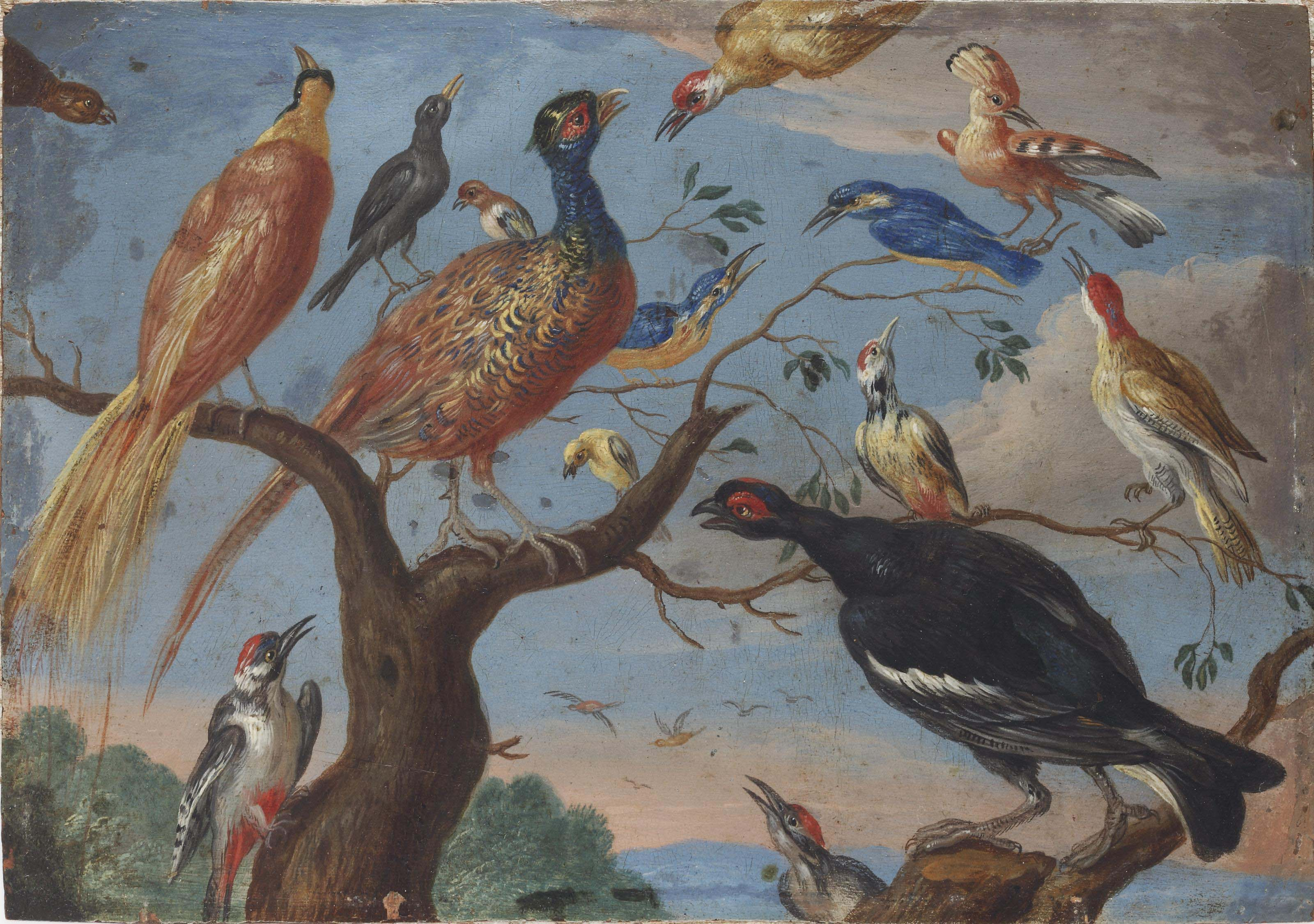 Bird 09 Van Kessel, Jan (1626 - 1679) - A Concert of Birds (1660)