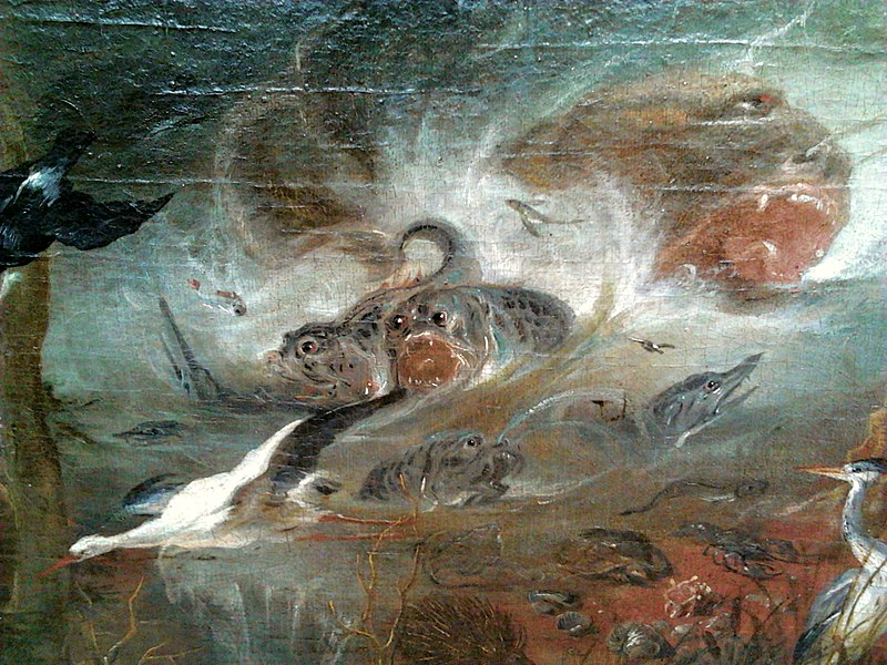 Bird 10 Willmann, Michael (1630 - 1706) - Creation of the World (1668)