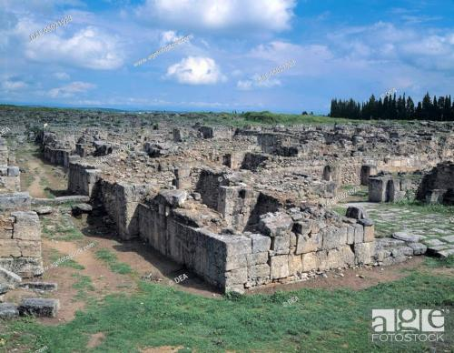 Cata 10 Ugarit
